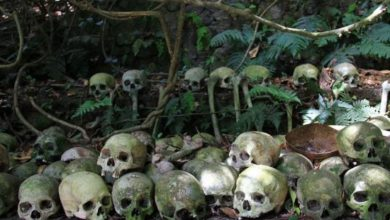 Photo of The eerie world of Skull Island in Trunyan, Bali