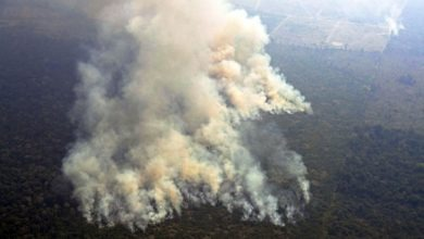 Photo of Hundreds of new fires in Brazil as outrage over Amazon grows
