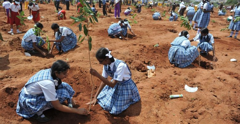 Photo of Indians plant 220 million trees in a single day