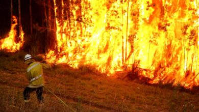 Photo of New bushfires spread across Australia