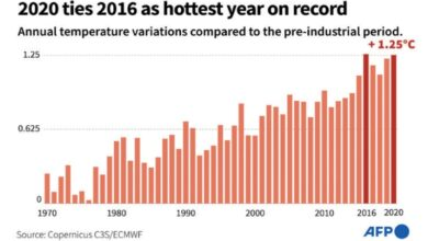 Photo of 2020 ties with 2016 as hottest year on record: EU body