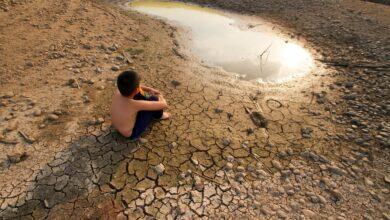 Photo of Human activity behind nearly all warming: study