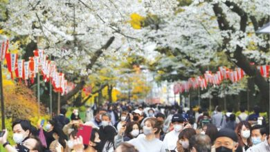 Photo of Japan's cherry blossoms see early bloom amid warming