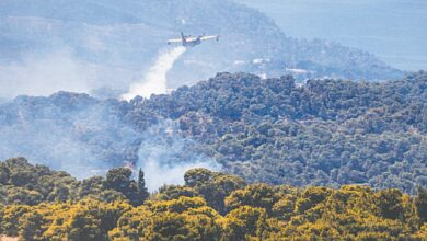 Photo of 'Ecological disaster' feared as Greece battles forest fire