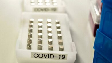 Photo of Gene editing used to 'chop up' Covid virus in human cells