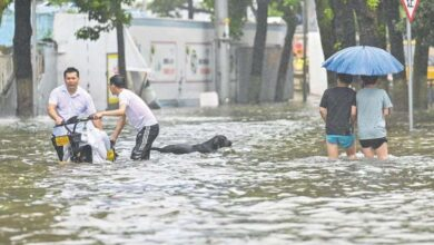 Photo of Typhoon drenches China's east, affects Shanghai